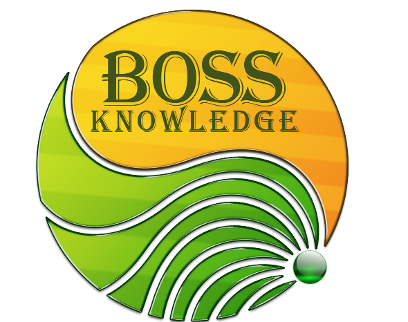 BOSS Knowledge Computers